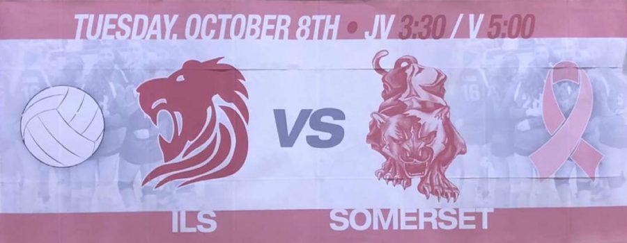 Event Banner for Dig Pink