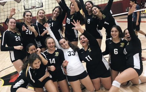 The ILS girls varsity volleyball team finished a successful season this week.