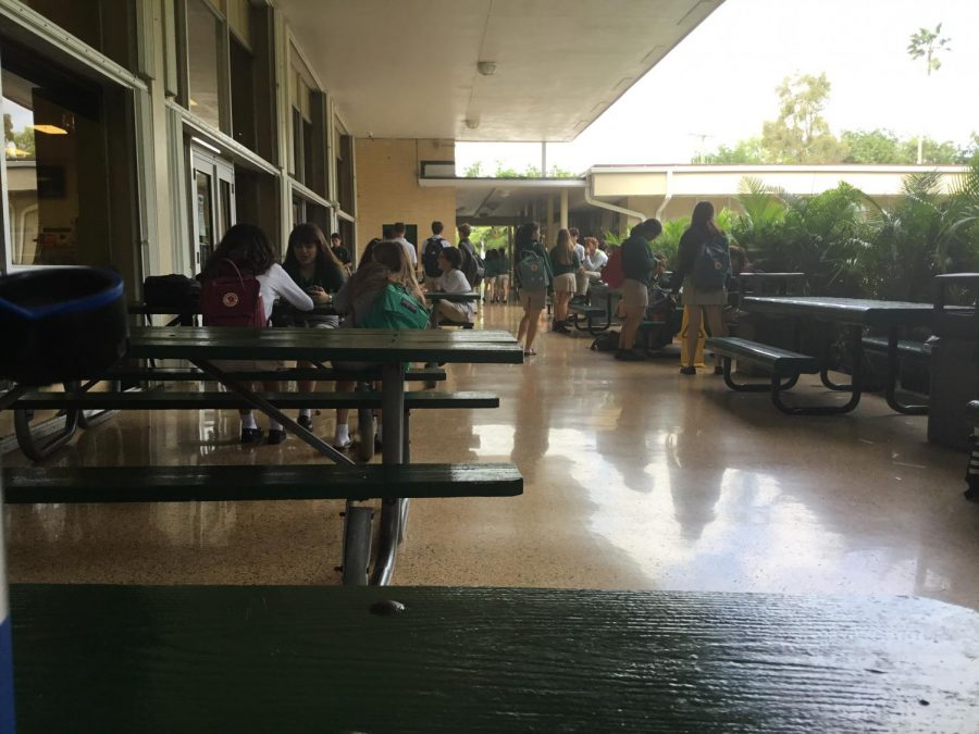The Latin American Culture club hosted their event on the breezeway.