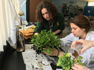 AP Environmental Class Recommends Changes to NASA's Lab