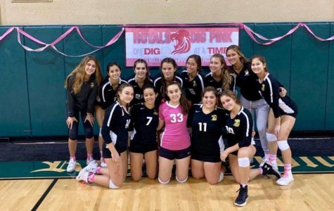 ILS Dig-Pink Is Back. Here's How You Could Help