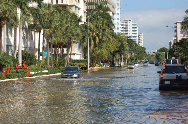 Miami-Dade Officials Release Plan to Address Rising Sea Levels